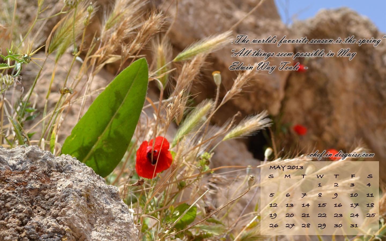 Free May 2013 Wallpaper Calendar
