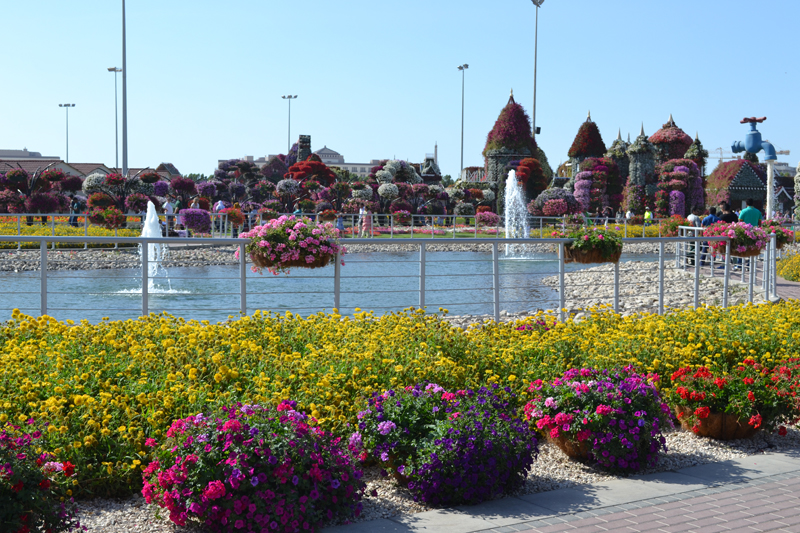Dubai miracle garden fountain