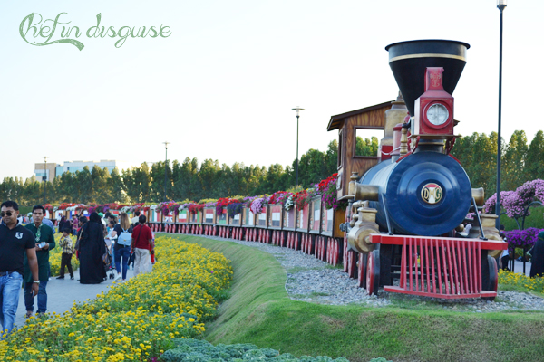 Flour train at Dubai miracle garden