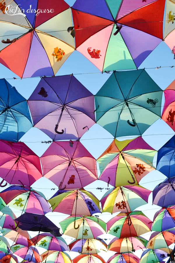 Umbrella lane Dubai miracle garden