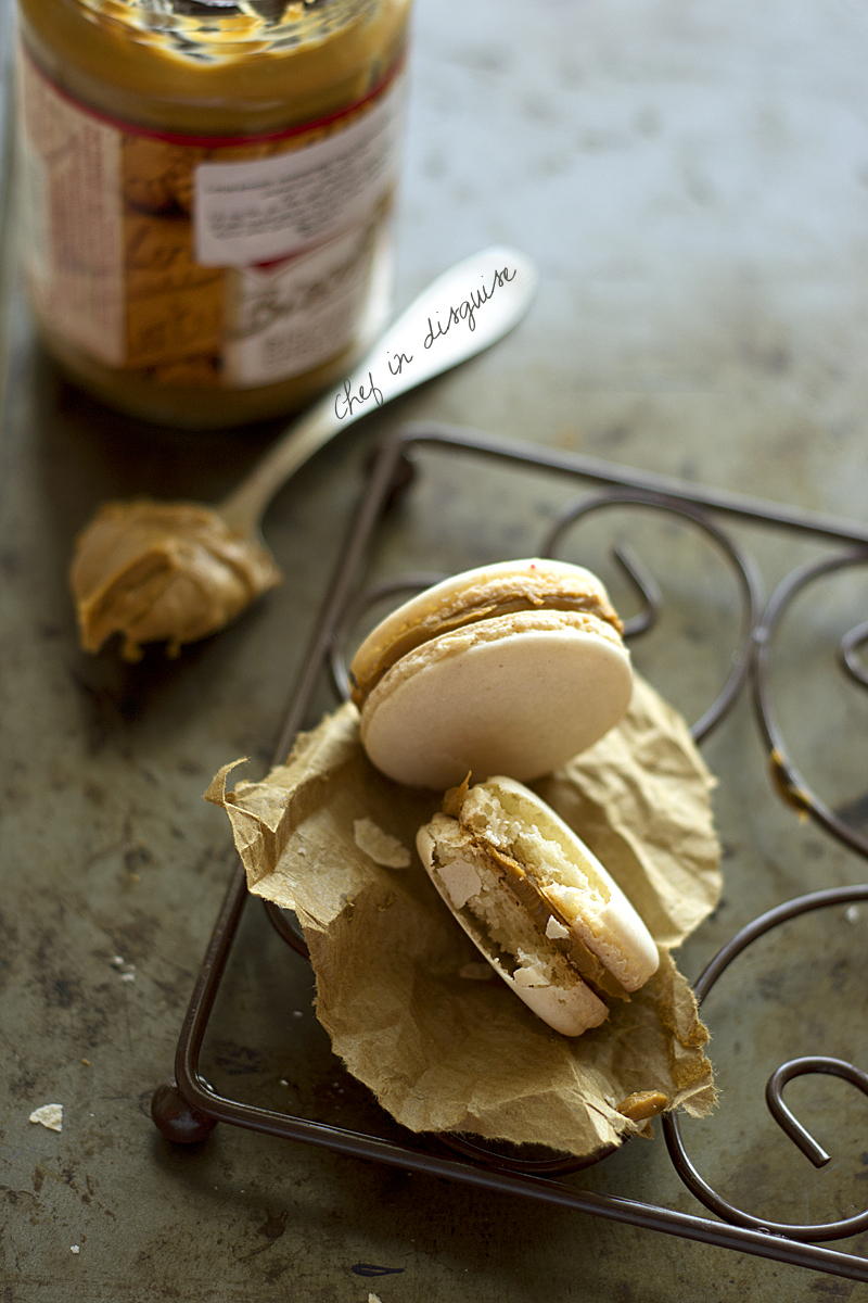 macarons with biscoff filling